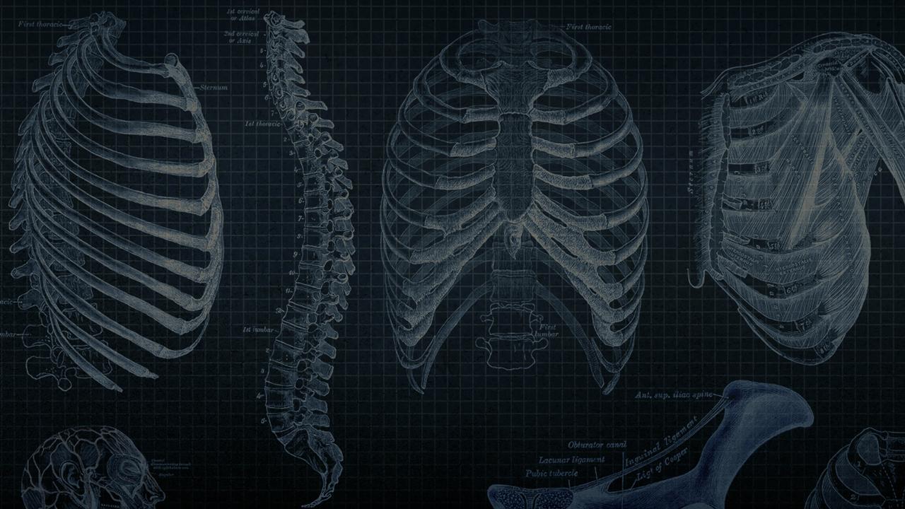 Code School: The Anatomy of Backbone.js Part 2   Pluralsight