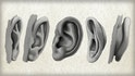 Methods for Drawing the Human Ear
