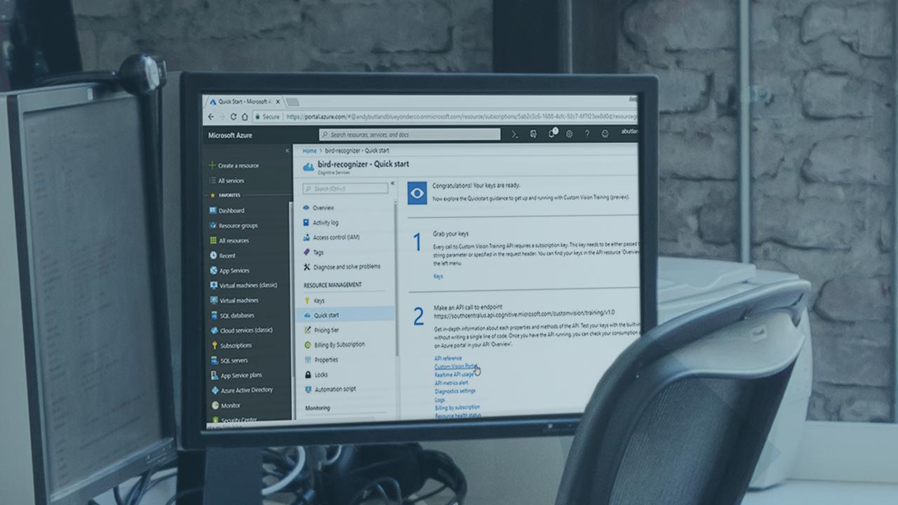 Web-Matters: Pluralsight Course: Azure Custom Vision Service