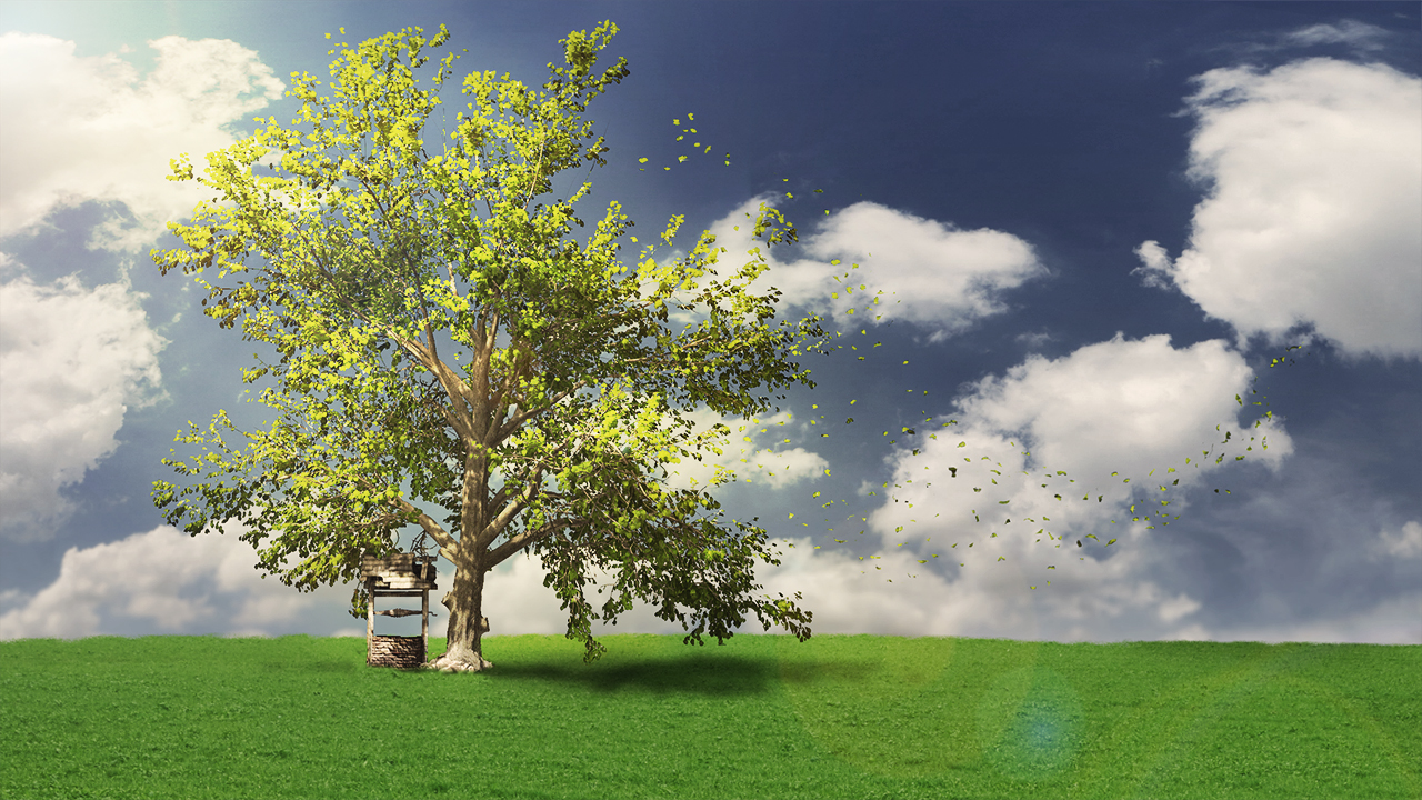 Modeling Realistic Trees with SpeedTree   Pluralsight