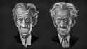 Producing Striking Caricatures in Photoshop