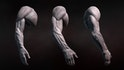 Sculpting Human Arms in ZBrush