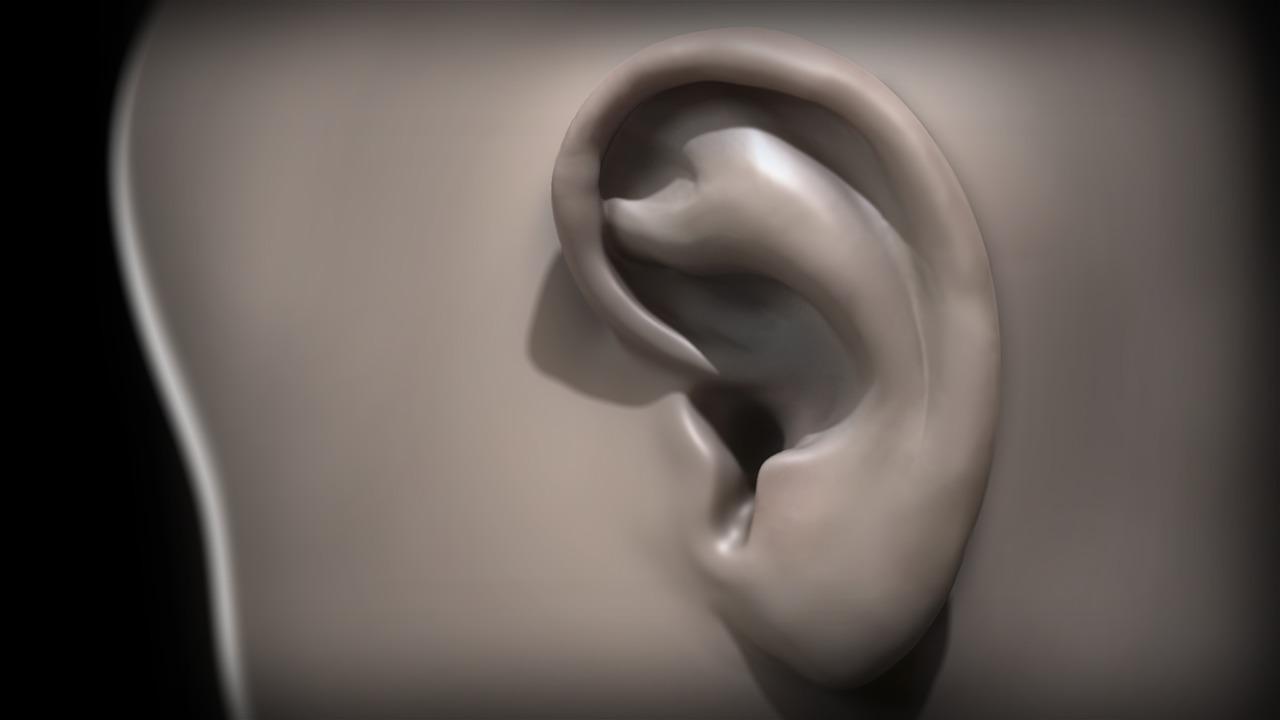 Sculpting Human Ears in Mudbox | Pluralsight