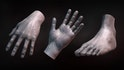 Sculpting Human Hands and Feet in ZBrush